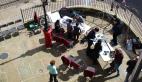 Sunny workshop